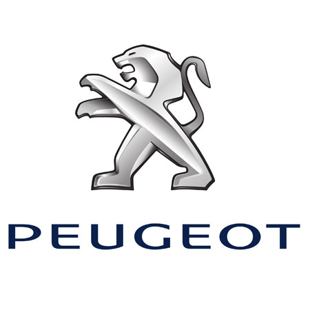Peugeot Charging Cables