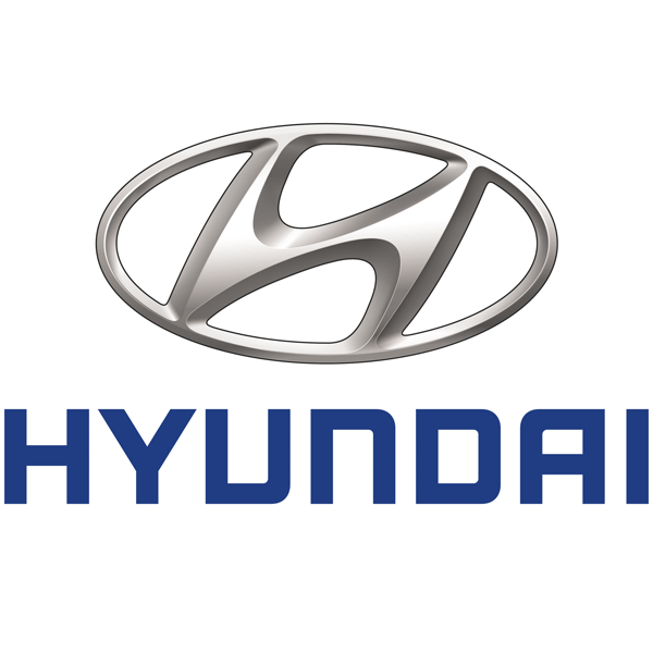Hyundai Charging Cables
