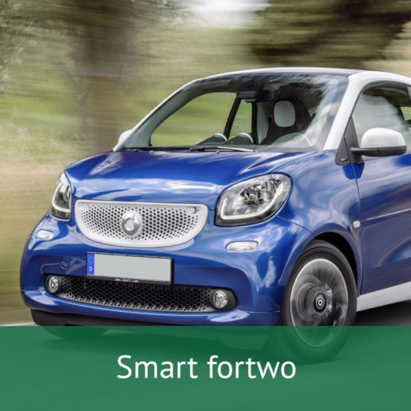 Smart fortwo Charging Cables
